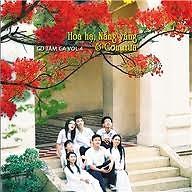Hoa Hạ, Nắng Vàng & Cơn Mưa - Various Artists