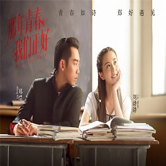 Album 那年青春我们正好 音乐原声 / Thanh Xuân Năm Ấy Chúng Ta Từng Gặp Gỡ OST - Various Artists