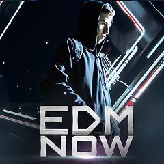 EDM Now (Những Ca Khúc EDM Đang Được Yêu Thích) - Various Artists