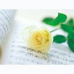 Playlist Đinh Khiết -