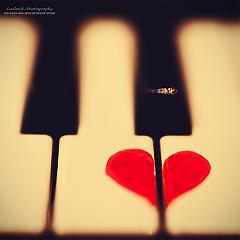 Playlist Nhạc Không Lời -