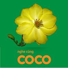 Cocomusic 9 - Nhạc Xuân -
