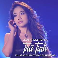 Liên Khúc Remix Trữ Tình - Phương Thùy (Nhóm Phù Sa) ft. Đào Phi Dương