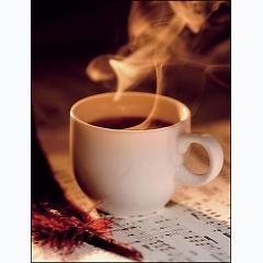 Playlist Những bài hát hay về cafe -