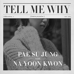 Tell Me Why - Pae Su Jung ft. Na Yoon Kwon