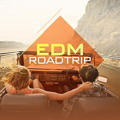 EDM Roadtrip - Various Artists