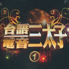 Album 台語電音三太子1/ Tam Thái Tử Của Âm Nhạc Điện Tử Đài Loan 1 (CD5) - Various Artists