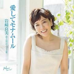 Yoshimi Iwasaki touch lyrics
