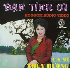 Lời bài hát được thể hiện bởi ca sĩ Thúy Hường
