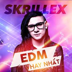 Album Các Bản Nhạc EDM Hay Nhất Của Skrillex - Skrillex