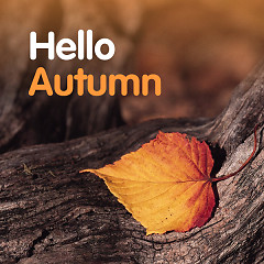 Hello Autumn - Various Artists