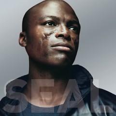 Seal 4 - Seal