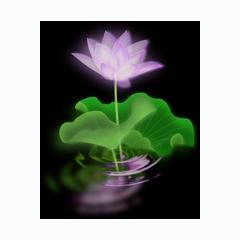 Phật Học Phổ Thông -