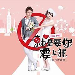 就是要你爱上我 电视原声带 / Chính Là Muốn Em Yêu Anh OST - Various Artists
