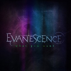 What You Want (CD Single) - Evanescence