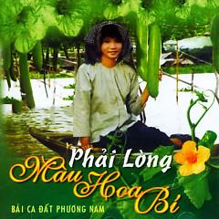 Phải Lòng Màu Hoa Bí - Various Artists