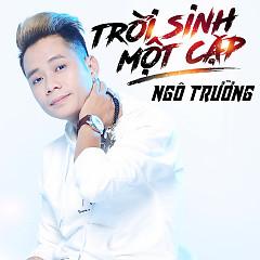 Album  - Ngô Trường