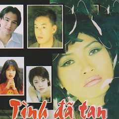 Tình Đã Tan - Various Artists