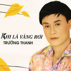 Album  - Trường Thanh