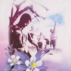 Cô Gái Mở Đường - Cao Minh ft. Quang Lý ft. Various Artists