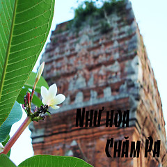 Như Hoa Chăm Pa - Various Artists