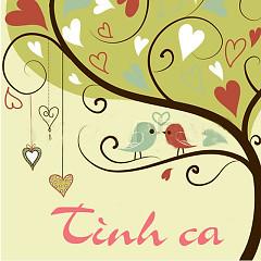 Tình Ca (Hoàng Việt ) - Various Artists