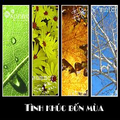 Tình Khúc Bốn Mùa ( Nguyễn Trọng Tạo ) - Various Artists