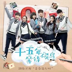 Album Mười Lăm Năm Chờ Đợi Chim Di Trú OST - Various Artists