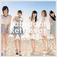 Labrador Retriever - AKB48