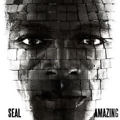 Amazing (CDM) - Seal