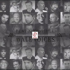 Album Best Audiophile Male Voices - Various Artists