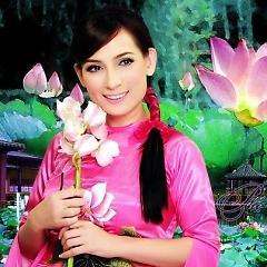 Playlist Tuyệt phẩm Phi Nhung -