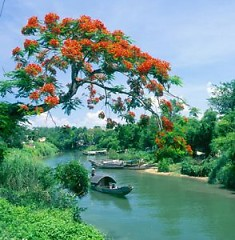 Chung Một Dòng Sông - Khánh Duy ft. Mai Hậu
