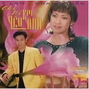 Chỉ Vì Em Yêu Anh - Ý Lan ft. Quang Tuấn