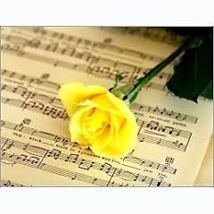 Những ca khúc hay nhất về mùa xuân -