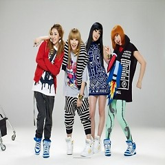 Album Don't Stop The Music - 2NE1