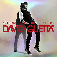 Nothing But The Beat 2.0 (CD2) - David Guetta