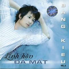 Lời bài hát được thể hiện bởi ca sĩ Bằng Kiều