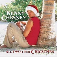 Lời bài hát được thể hiện bởi ca sĩ Kenny Chesney