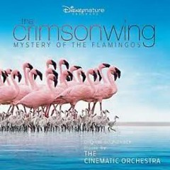 The Crimson Wing : Mystery Of The Flamingos - The Cinematic Orchestra