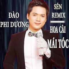 Album Hoa Cài Mái Tóc - Đào Phi Dương