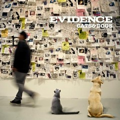 Cats & Dogs - Evidence