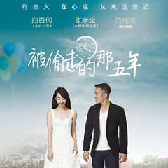 被偷走的那五年 电影原声带 / OST The Stolen Years / 5 Năm Bị Đánh Cắp OST - Various Artists