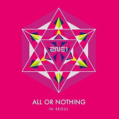 2014 2NE1 WORLD TOUR LIVE 'ALL OR NOTHING In SEOUL' - 2NE1