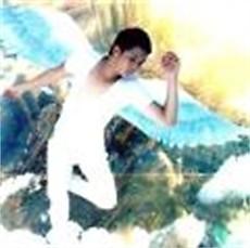 Album Lối Đi Màu Trắng - Khang Luân