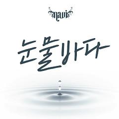 Tears Sea - Navi
