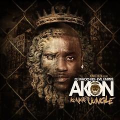 Konkrete Jungle - Akon