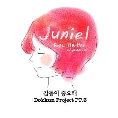 DOKKUN Project Part.3 - JUNIEL