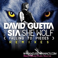 She Wolf (Falling To Pieces)-PROMO - David Guetta ft. Sia