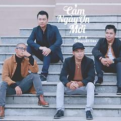 Album  - MTV
